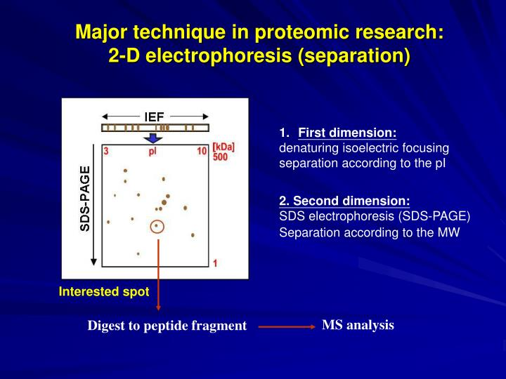 Major technique in proteomic research: