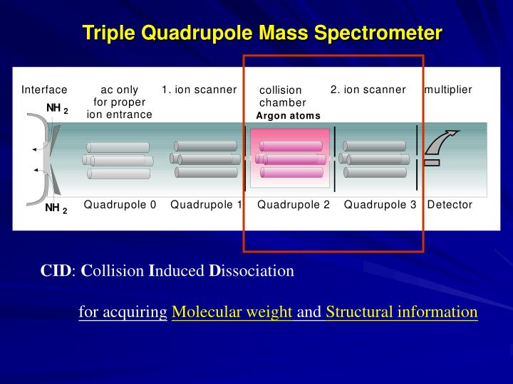 Triple Quadrupole Mass Spectrometer