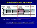 triple quadrupole mass spectrometer