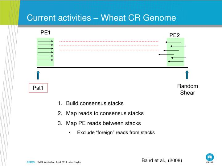 Current activities – Wheat CR Genome