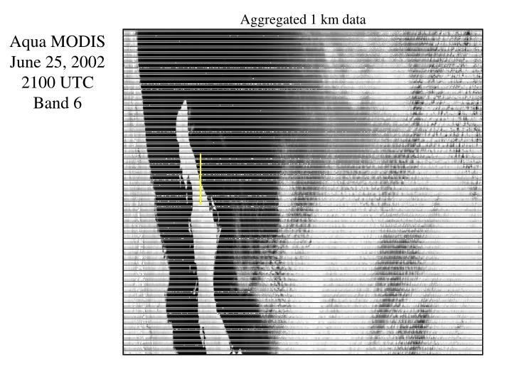 Aggregated 1 km data