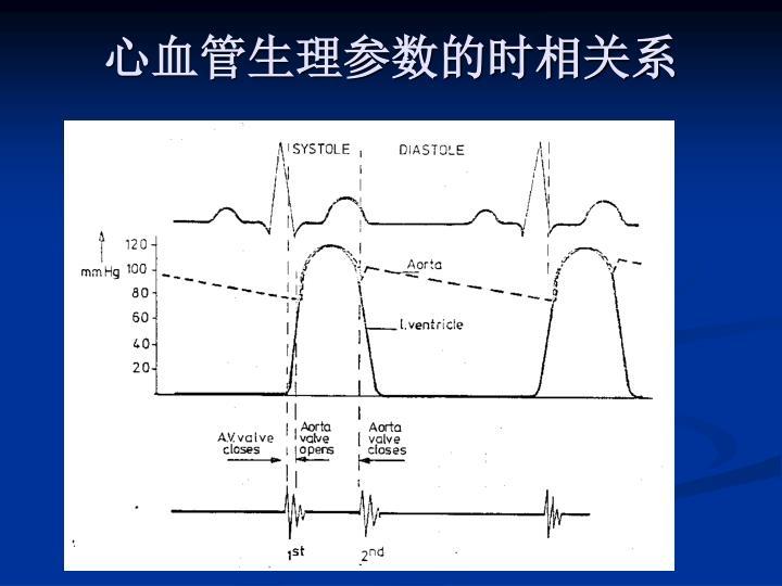 心血管生理参数的时相关系