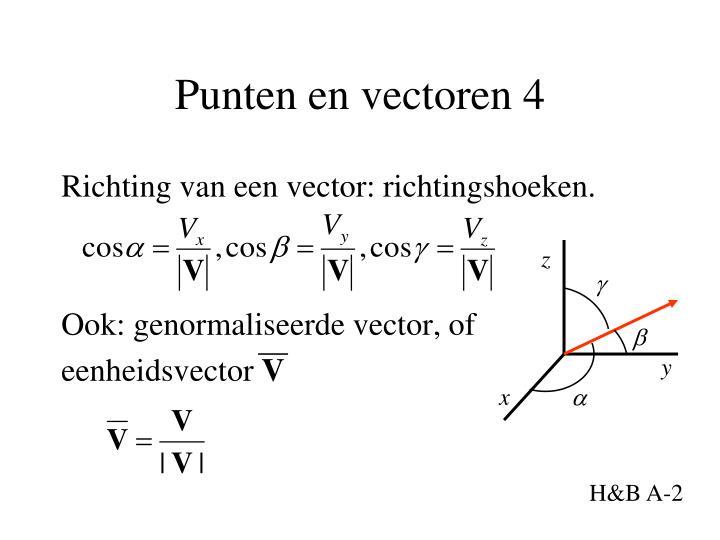 Punten en vectoren 4