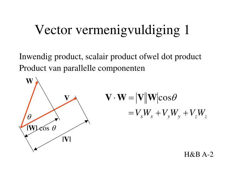 Vector vermenigvuldiging 1