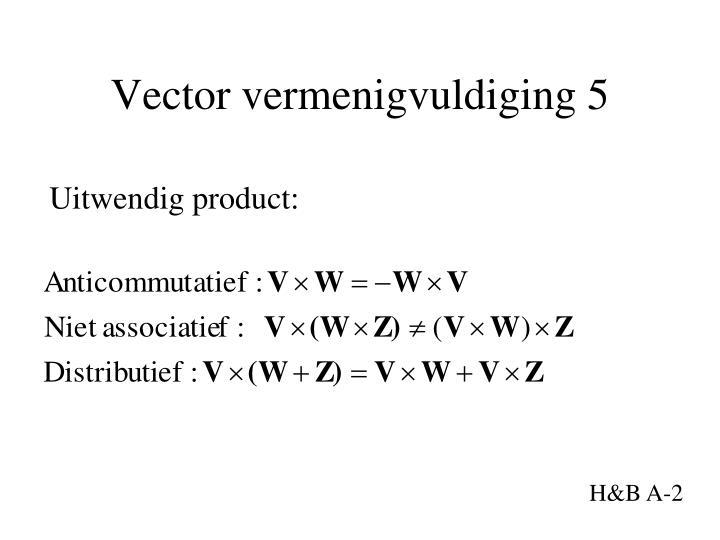 Vector vermenigvuldiging 5