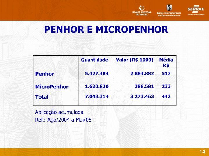 PENHOR E MICROPENHOR