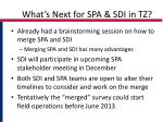 what s next for spa sdi in tz