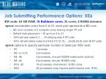 job submitting performance options xe6
