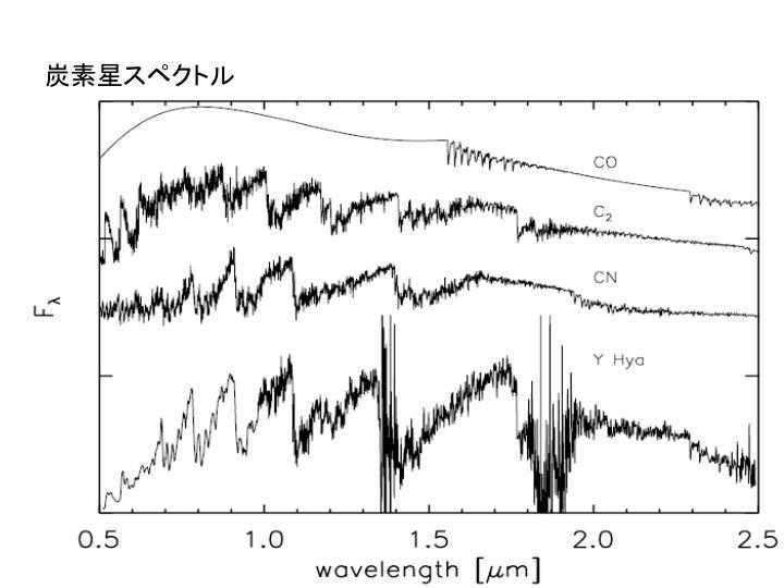 炭素星スペクトル