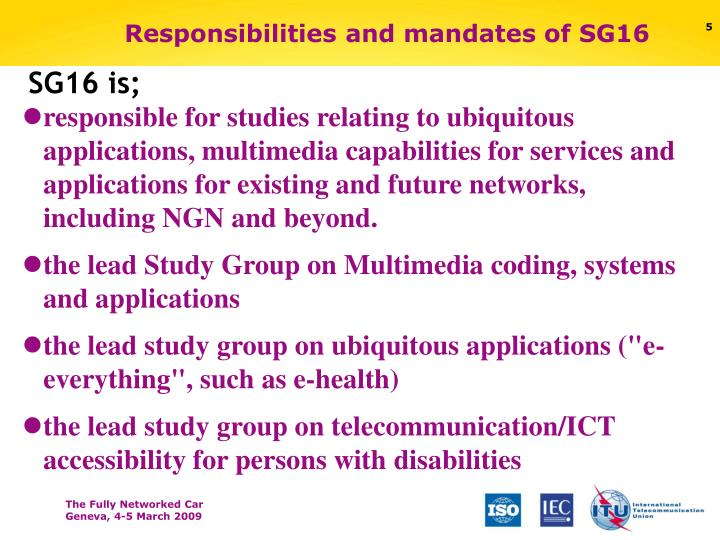 Responsibilities and mandates of SG16