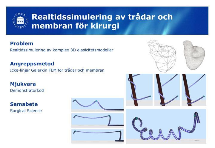 Realtidssimulering av trådar och membran för kirurgi