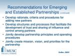 recommendations for emerging and established partnerships continued