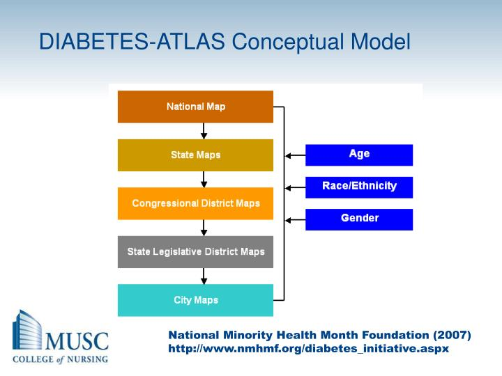 DIABETES-ATLAS Conceptual