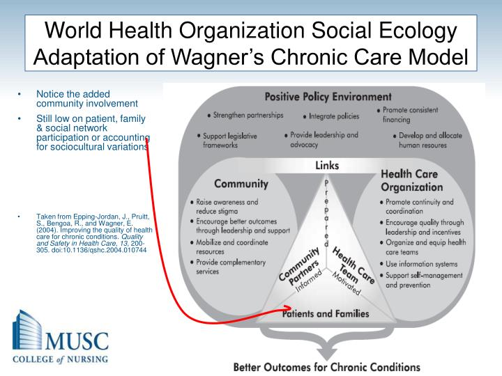 World Health Organization Social Ecology Adaptation of Wagner's Chronic Care Model