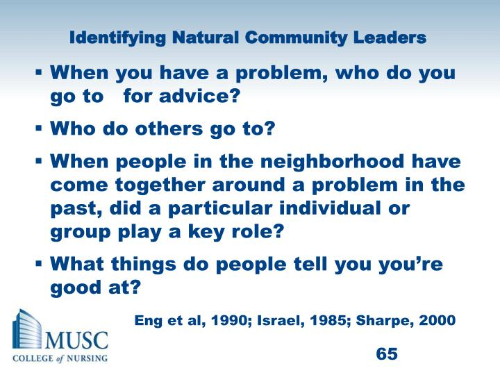 Identifying Natural Community Leaders