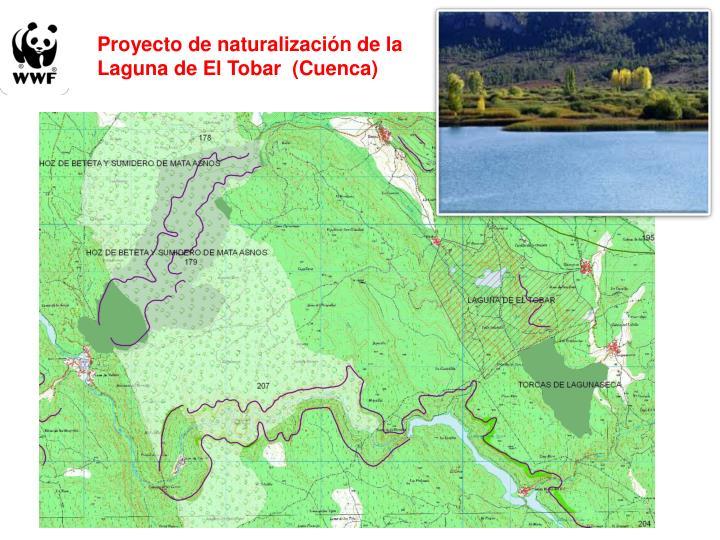 Proyecto de naturalización de la Laguna de El Tobar  (Cuenca)