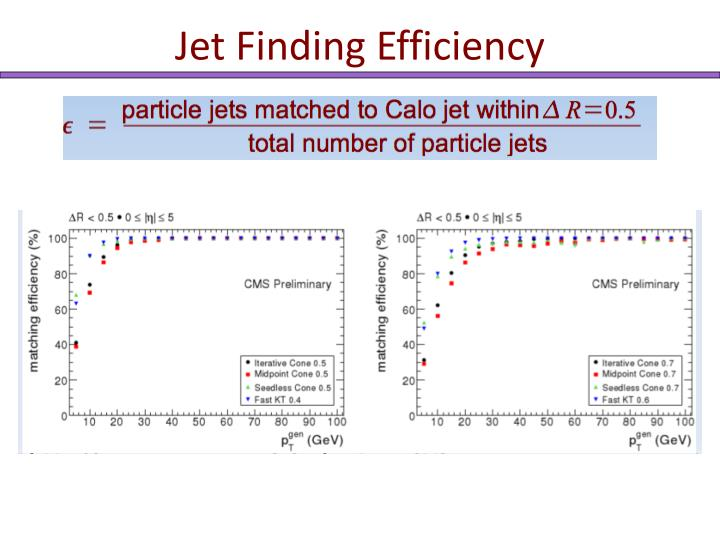 Jet Finding Efficiency