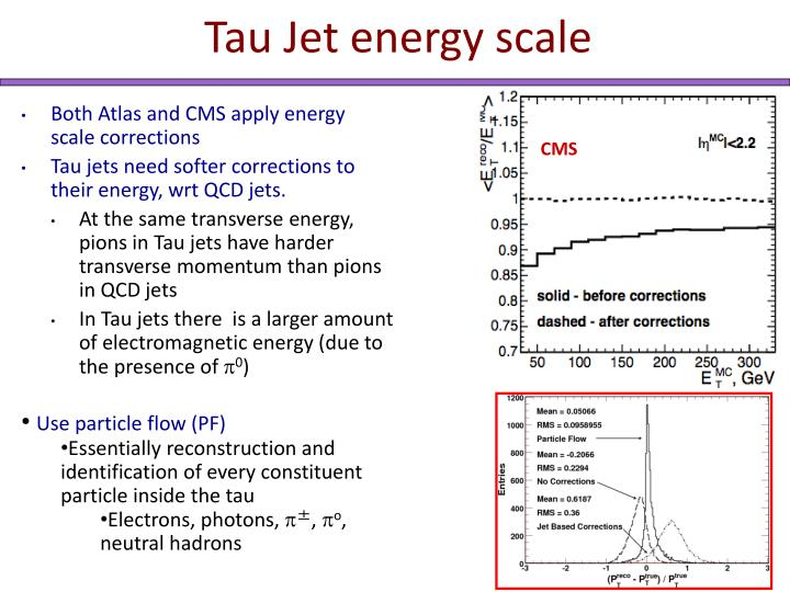 Tau Jet energy scale