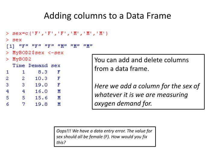 Adding columns to a Data Frame