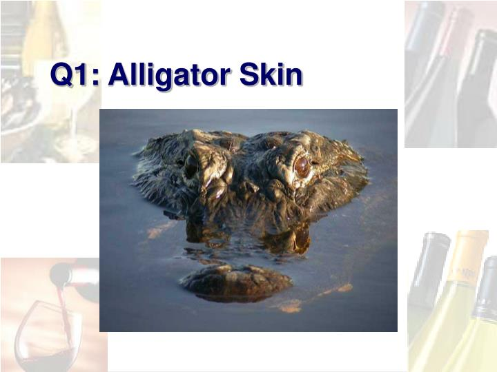 Q1: Alligator Skin