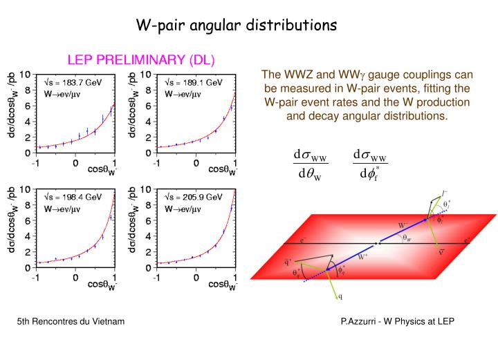 W-pair angular distributions