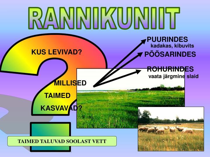 RANNIKUNIIT