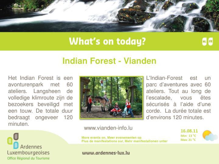 Indian Forest - Vianden