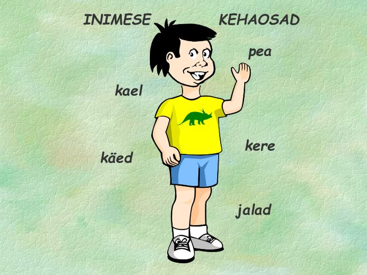 INIMESE           KEHAOSAD