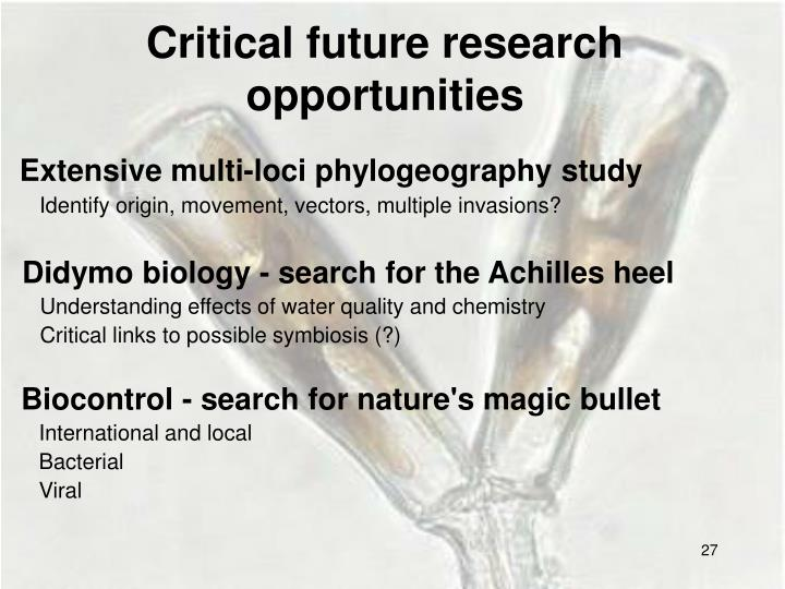 Critical future research opportunities