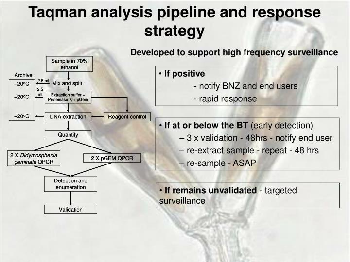Taqman analysis pipeline and response strategy
