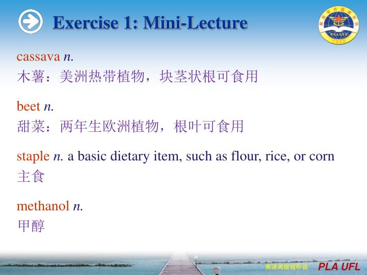 Exercise 1: Mini-Lecture