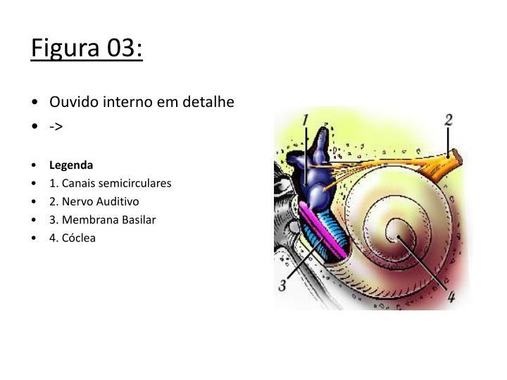 Figura 03: