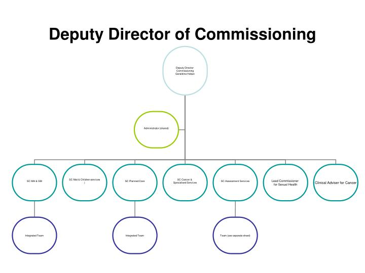 Deputy Director of Commissioning