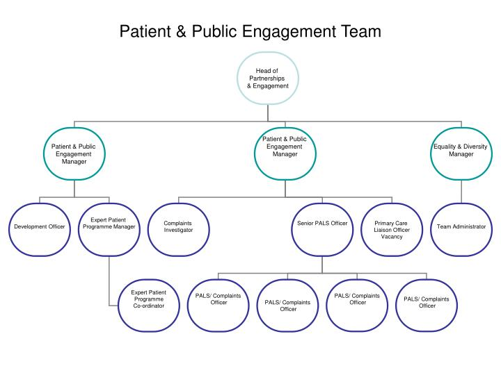 Patient & Public Engagement Team