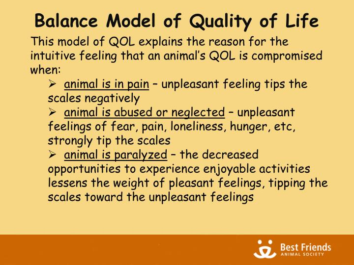 Balance Model of Quality of Life