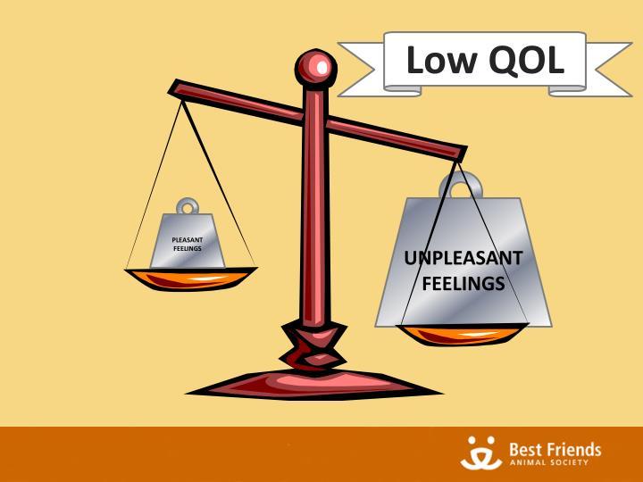 Low QOL