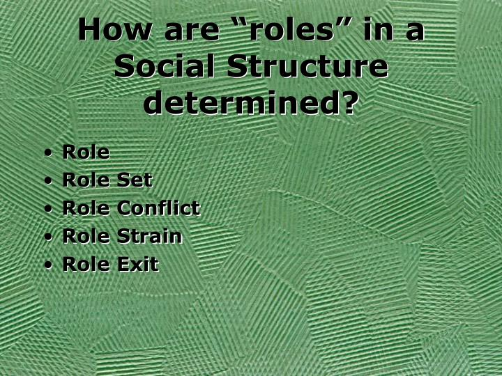 "How are ""roles"" in a Social Structure determined?"