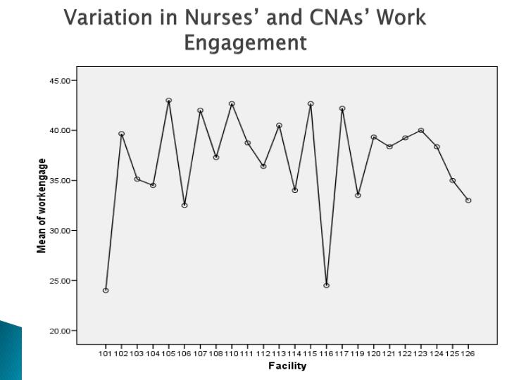 Variation in Nurses' and CNAs' Work Engagement
