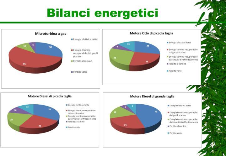 Bilanci energetici