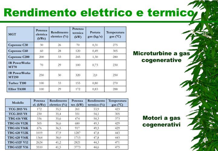 Rendimento elettrico e termico