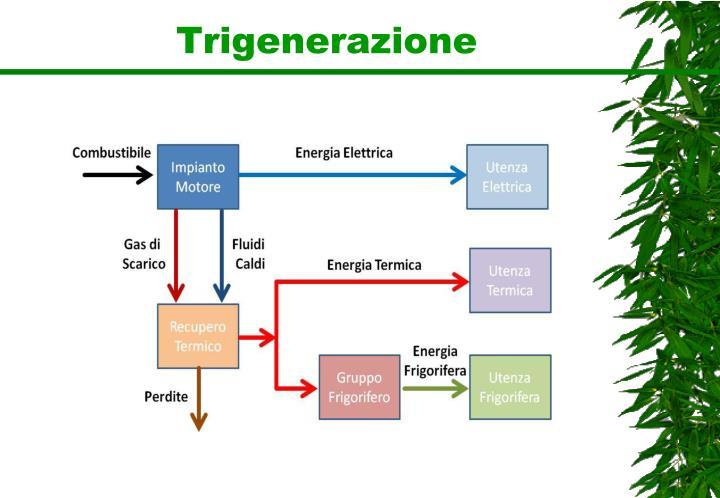Trigenerazione