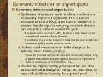 economic effects of an import quota7