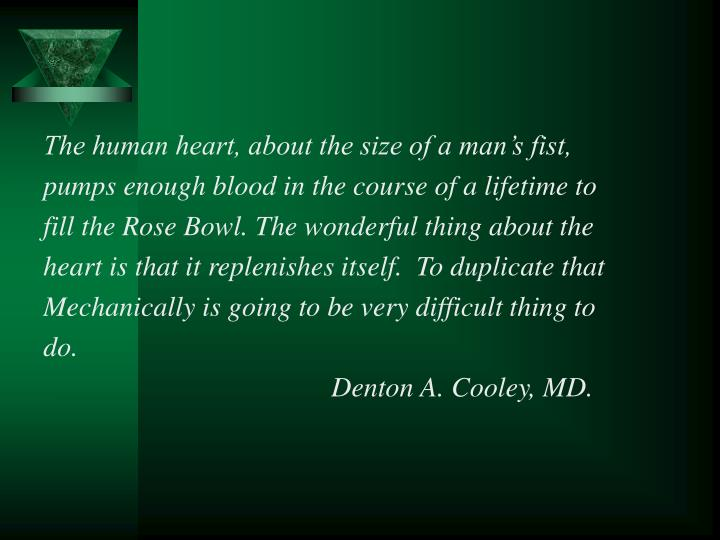 The human heart, about the size of a man's fist,