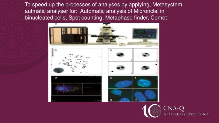 To speed up the processes of analyses by applying, Metasystem autmatic analyser for:  Automatic analysis of Micronclei in binucleated cells, Spot counting, Metaphase finder, Comet