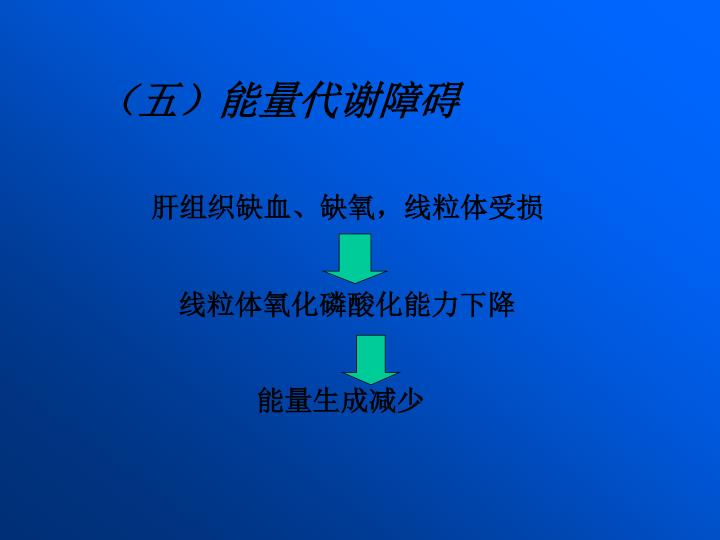 (五)能量代谢障碍