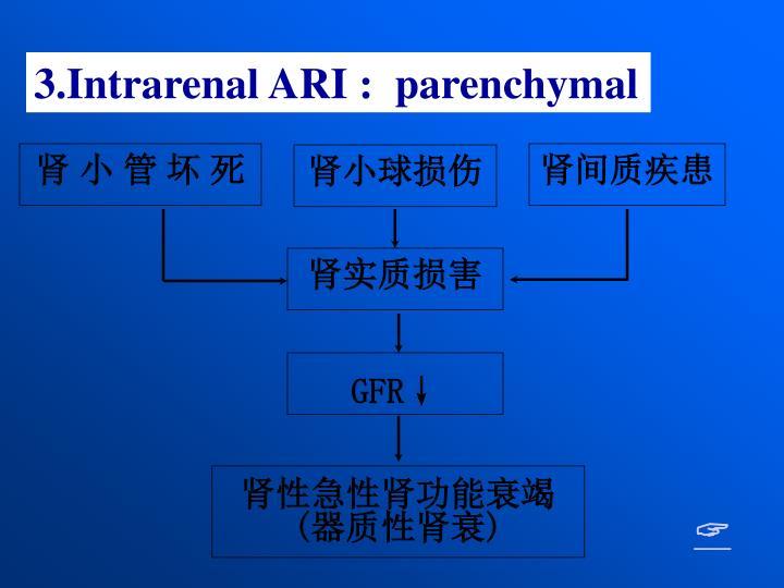 3.Intrarenal ARI :  parenchymal