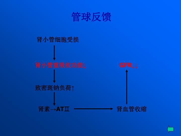 肾小管细胞受损