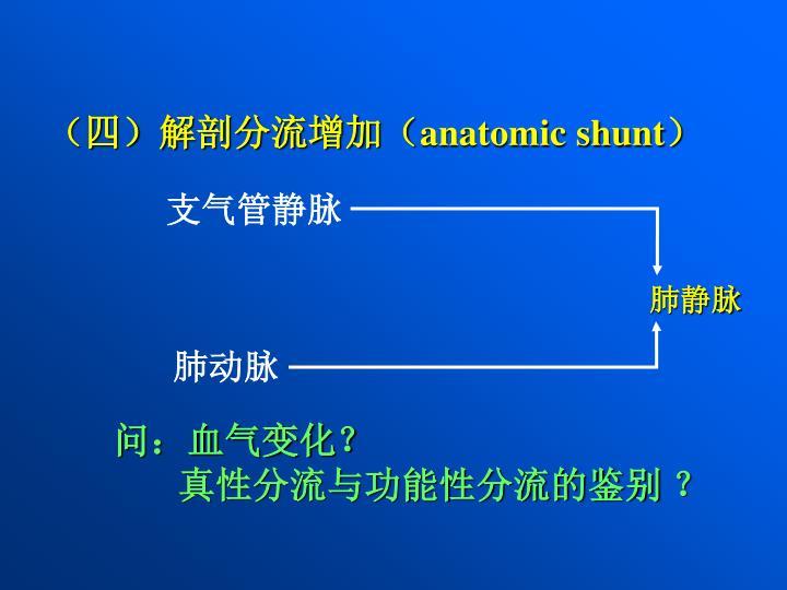 (四)解剖分流增加(