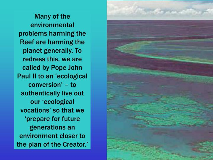 Many of the environmental problems harming the Reef are harming the planet generally. To redress this, we are called by Pope John Paul II to an 'ecological conversion' – to authentically live out our 'ecological vocations' so that we 'prepare for future generations an environment closer to the plan of the Creator.'
