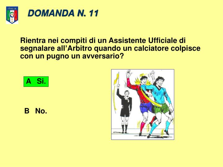 DOMANDA N. 11